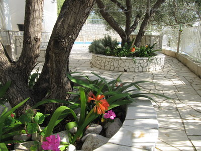 Apartments VILLA FALCON 6369, Podaca, , Region Split-Dalmatia