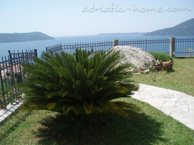 Apartments BOŽOVIĆ, Herceg Novi, Montenegro - photo 2