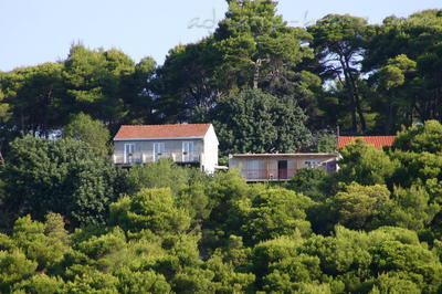 Apartments KRALJ III, Mljet, Croatia - photo 2