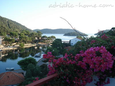 Apartments Villa Paradise IV, Lastovo, Croatia - photo 1