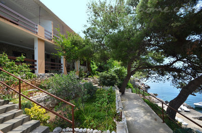 Appartements LJILJANA - Bijeli, Korčula, Croatie - photo 14