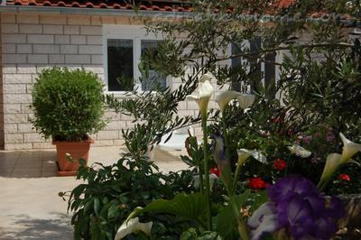 Studio apartment MARJANA, Hvar, Croatia - photo 2