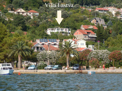 Apartments Deluxe VILLA LASTVA IV   ****, Tivat, Montenegro - photo 3
