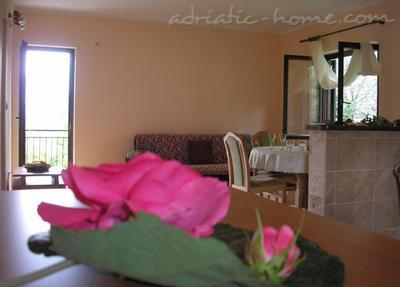 Apartments RITA, Tivat, Montenegro - photo 4