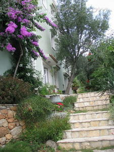 Studio apartment PINO Green, Cres, Croatia - photo 4