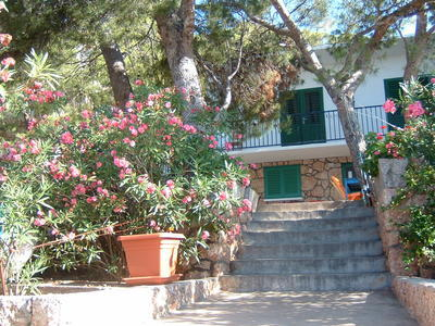 Apartments Bougainvillea, Hvar, Croatia - photo 8