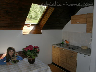 Rooms BOOA Rooms Irena Lake Bohinj, Bohinj, Slovenia - photo 5