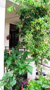 Appartementen Comfort two bedroom apartment near beach and transport, Bar, Montenegro - foto 5