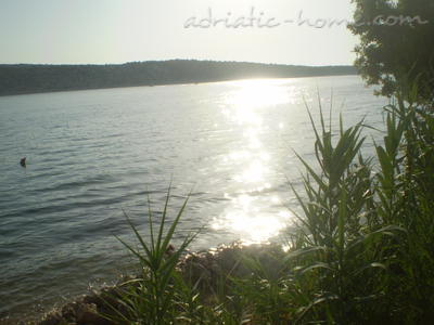 Studio apartment Barbat , Rab, Croatia - photo 1