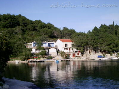 Apartments Lampalo - Mihaela, Mljet, Croatia - photo 1