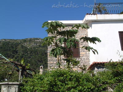 Apartments Rumija, Villa Maini, Budva, Montenegro - photo 1