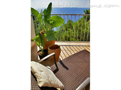 Apartment Villa pod borom - MAKJANIĆ V, Hvar, Croatia - photo 4