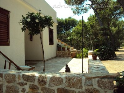 Apartment Villa pod borom - MAKJANIĆ V, Hvar, Croatia - photo 15