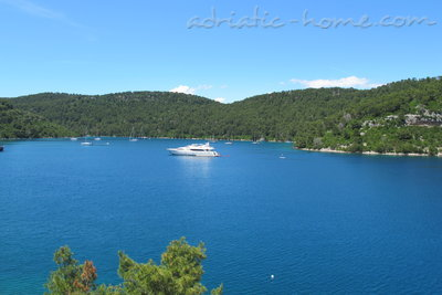 Apartments Matana Chano - JUGO, Mljet, Croatia - photo 1