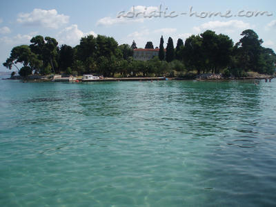 Apartments Ivankovic - Red, Preko, Croatia - photo 4