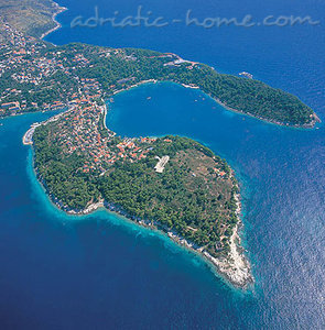 Studio  Villa Senjo-AP4, Cavtat, Croatie - photo 13