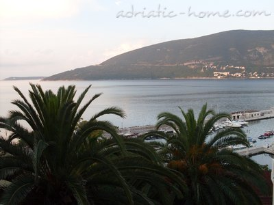 Apartments PILJUROVIĆ, Herceg Novi, Montenegro - photo 11
