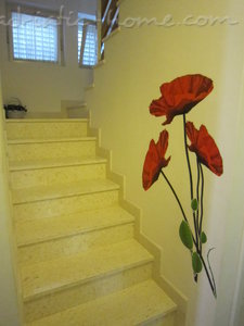 Studio apartment Villa Olga, Makarska, Croatia - photo 5