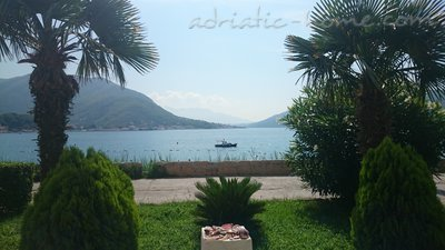 Studio apartment Milica Dabovic, Herceg Novi, Montenegro - photo 1