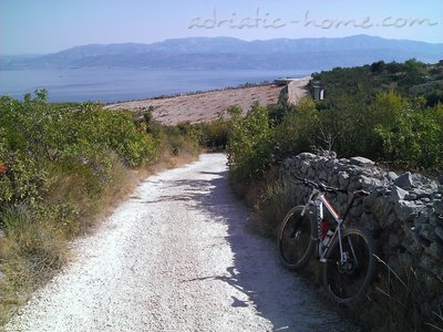 Studio apartment BEPPO, Brač, Croatia - photo 15