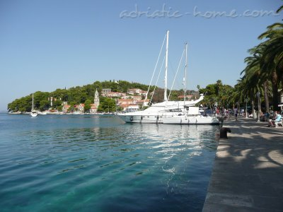 Studio apartment Villa  Senjo-AP5, Cavtat, Croatia - photo 13