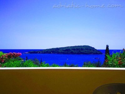 Apartments Luna, Molunat (Konavle), Croatia - photo 3