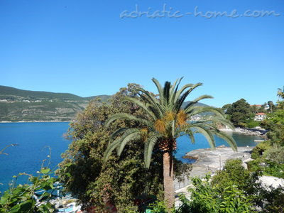 Studio apartment JovankaAc1, Herceg Novi, Montenegro - photo 3