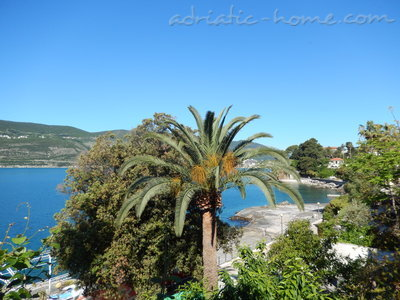 Rooms A1, Herceg Novi, Montenegro - photo 3