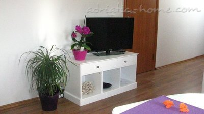 Studio apartment  PINO Lila, Cres, Croatia - photo 8