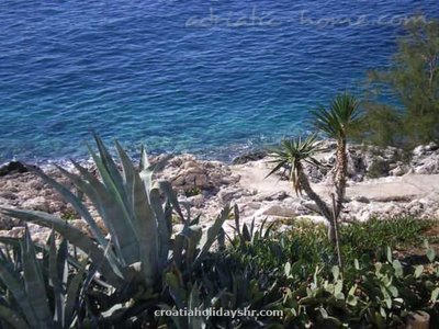 Studio apartment Mia 3, Hvar, Croatia - photo 11
