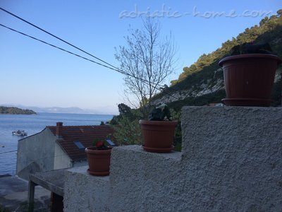 Appartements Flora, Mljet, Croatie - photo 2