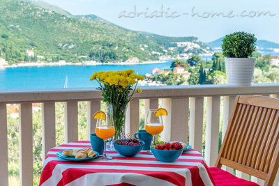Appartements Bellevue Apartment-Zaton Bay-Dubrovnik, Zaton (Dubrovnik), Croatie - photo 2