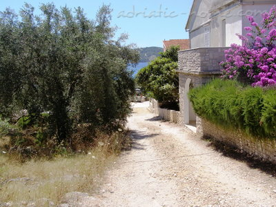 Maison  Villa Sava, Korčula, Croatie - photo 3