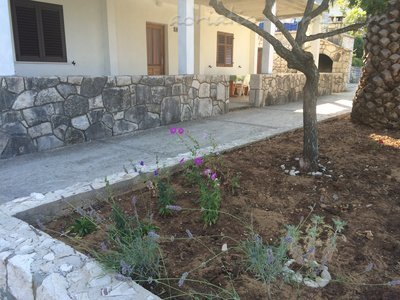 Apartments Frane House, Mljet, Croatia - photo 4
